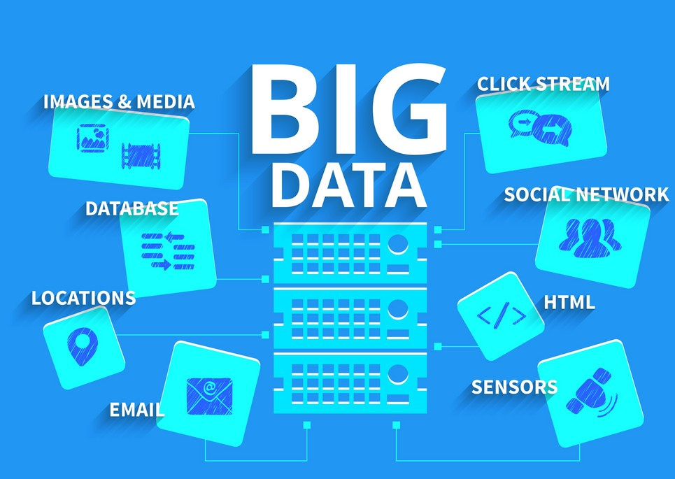 Where do organizations focus their Big Data efforts on?