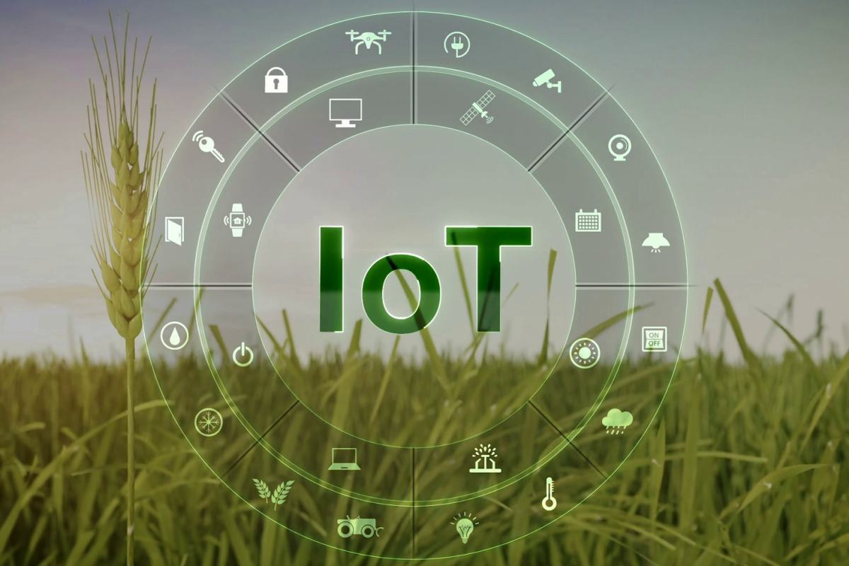 Green IoT way to save the environment 20
