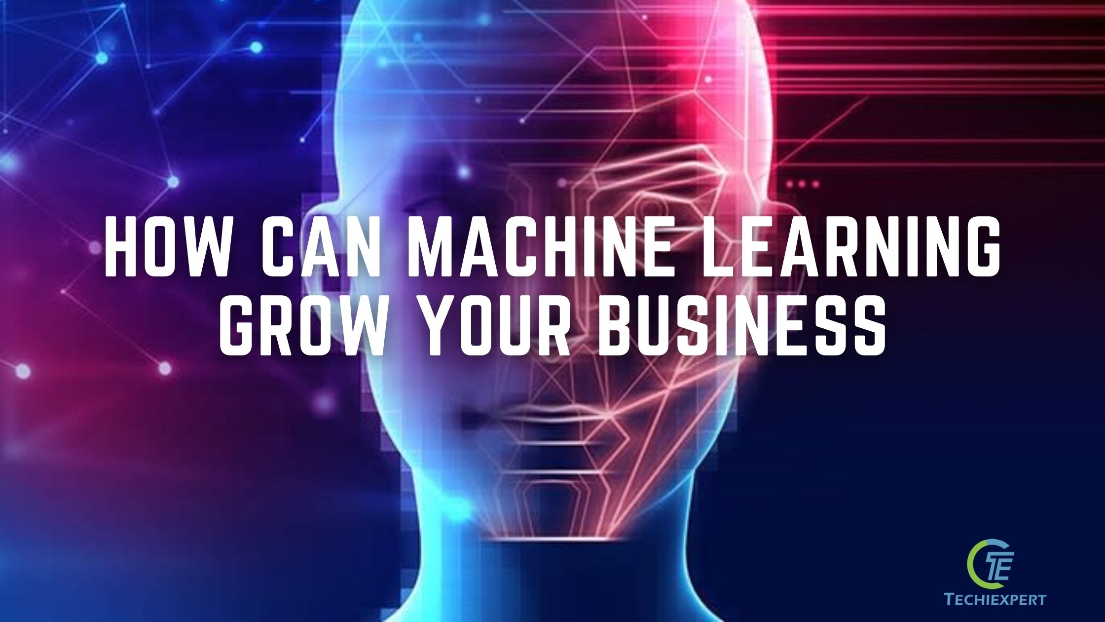 How can machine learning grow your business