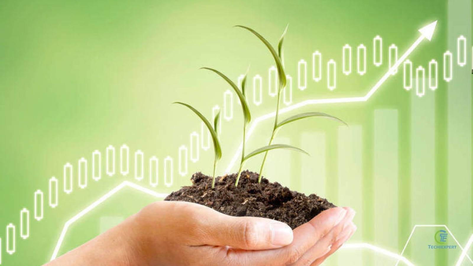 Why Contract Farming Could Be The Next Big Thing For Agritech Startups 2