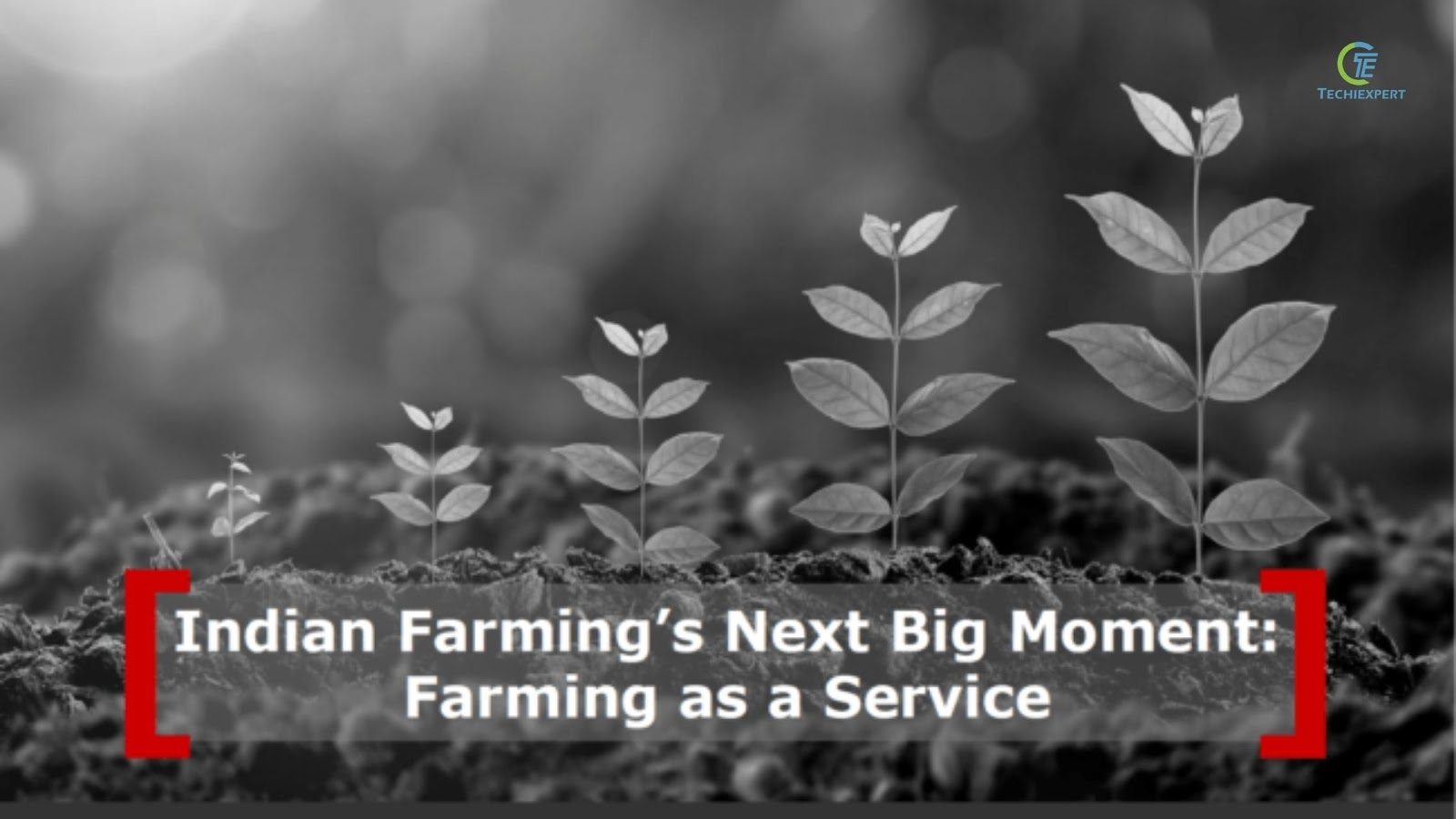Why Contract Farming Could Be The Next Big Thing For Agritech Startups 5